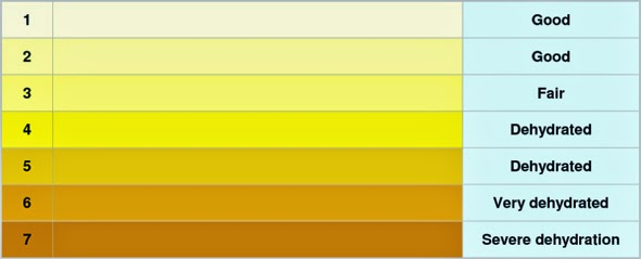 Hydration-colour-chart