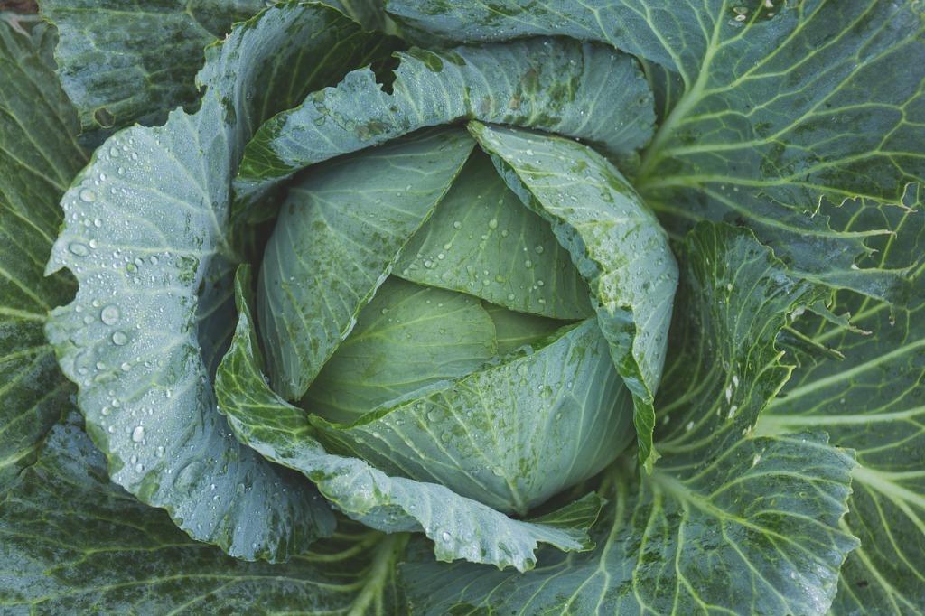 how-to-make-kale-taste-better